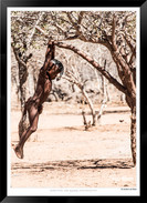 Images_of_the_Himba_People_-_032_-_©_Jon