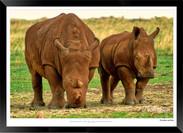 Images of East Africa - 025 - © Jonathan van Bilsen.jpg
