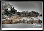 Chilly Morning - Jonathan van Bilsen.jpg