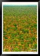 Images of East Africa - 020 - © Jonathan van Bilsen.jpg