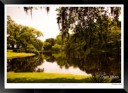 Images of Charleston -  IOSC- 006.jpg