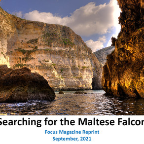 In Search of the Maltese Falcon