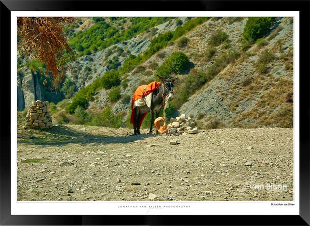 Images of Shekiu - 002 - Jonathan van Bi