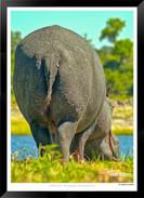 Images of East Africa - 004 - © Jonathan van Bilsen.jpg