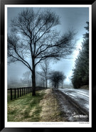 After the Rain - IOPP-041 - Jonathan van