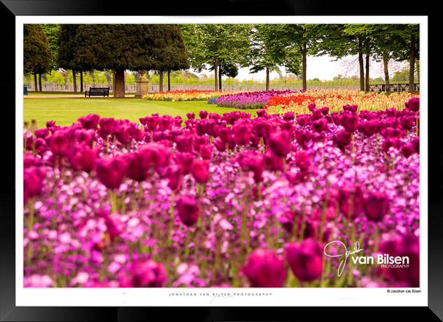 Images_of_Hampton_Court_-_013_-_©Jonath