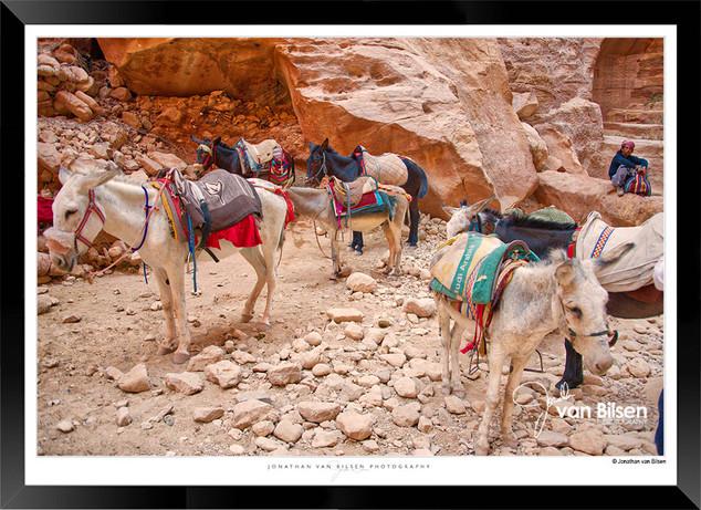 Images_of_Petra_-_027-_©_Jonathan_van_B