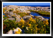 Images of Nova Scotia -  009 - ©Jonathan