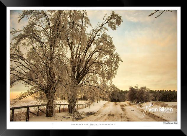 A Road Less Travelled - Jonathan van Bil