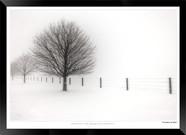 Loneliness - IOPP-035 - Jonathan van Bil