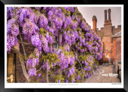 Images_of_Hampton_Court_-_001_-_©Jonath
