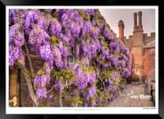 Images_of_Hampton_Court_-_001_-_©Jonath