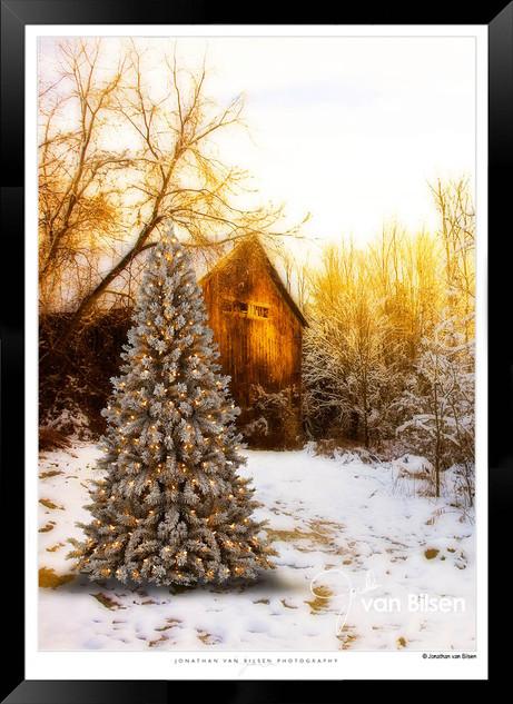 Christmas Gold - Jonathan van Bilsen.jpg
