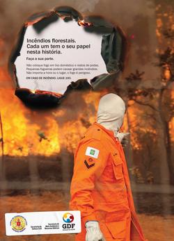 GDF - Incêndios Florestais