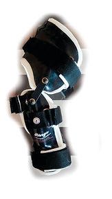 protesis para ligameno de rodilla en perro, LCA, Luxacion