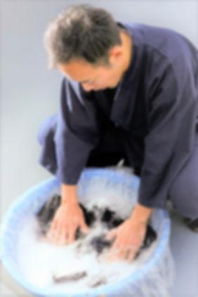 洗い写真 タカノリ (2).jpg