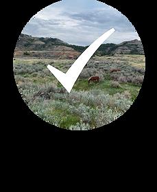 North Dakota Checkmark.png