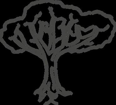 Tree Sketch.png