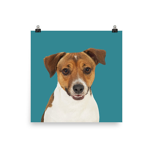 Art Print · Project 100 Dogs · Toby the Jack Russel Terrier