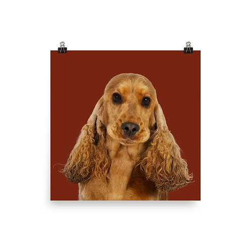 Art Print · Project 100 Dogs · Molly the English Cocker Spaniel