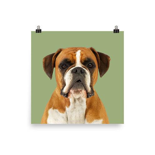 Art Print · Project 100 Dogs · Kayla the Boxer
