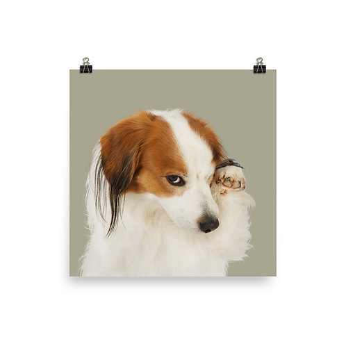 Art Print · Project 100 Dogs · Milo the Nederlandse Kooikerhondje