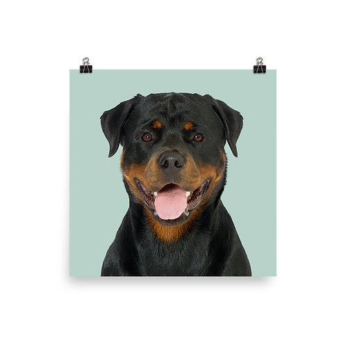 Art Print · Project 100 Dogs · Zanka the Rottweiler