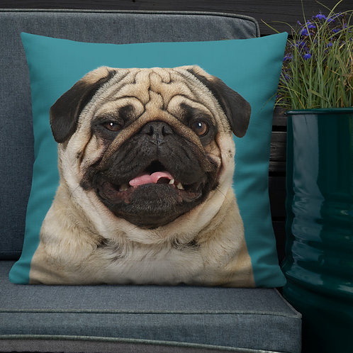 Egon the Pug Cushion, around 55 cm x 55 cm