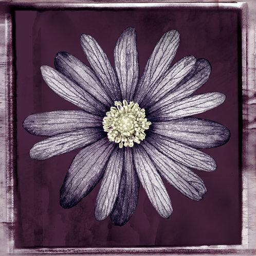 Vintage Flower · Dark