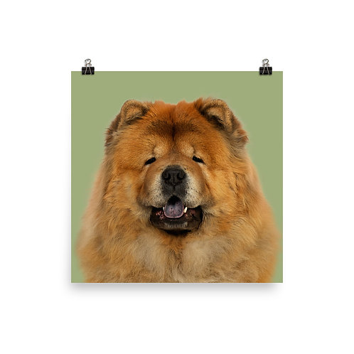 Art Print · Project 100 Dogs · Si-Sunchine the Chow Chow