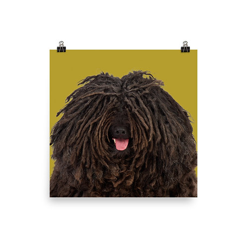 Art Print · Project 100 Dogs · Esmand the Puli