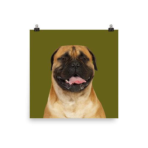 Art Print · Project 100 Dogs · Emmet the Bullmastiff