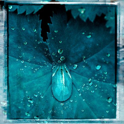 Water Drops · Blue