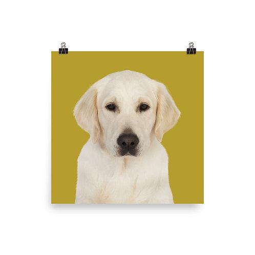 Art Print · Project 100 Dogs · Gabby the Golden Retriever