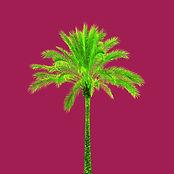 15_Tree_no1.jpg