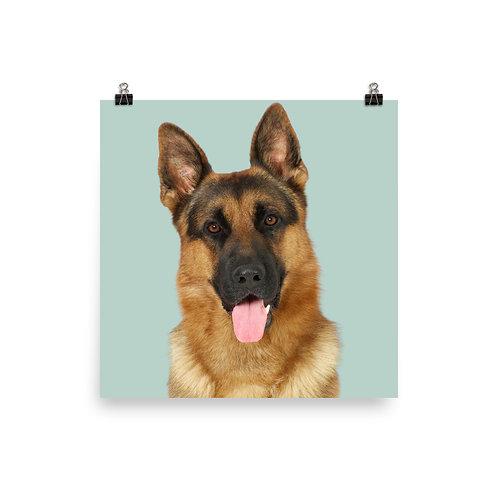 Art Print · Project 100 Dogs · Æsko the German Shepherd