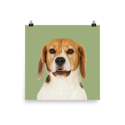 Art Print · Project 100 Dogs · Samba the Beagle
