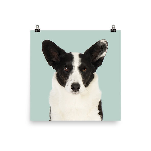 Art Print · Project 100 Dogs · Ludvig the Welsh Corgi Cardigan