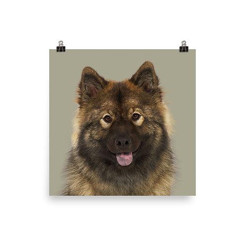 Art Print · Project 100 Dogs · Bjanka the Eurasier