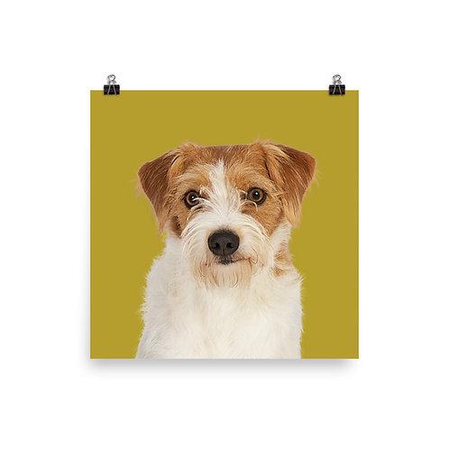 Art Print · Project 100 Dogs · Pippi the Kromfohrländer