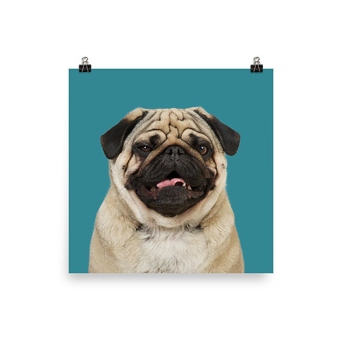 Art Print · Project 100 Dogs · Egon the Pug