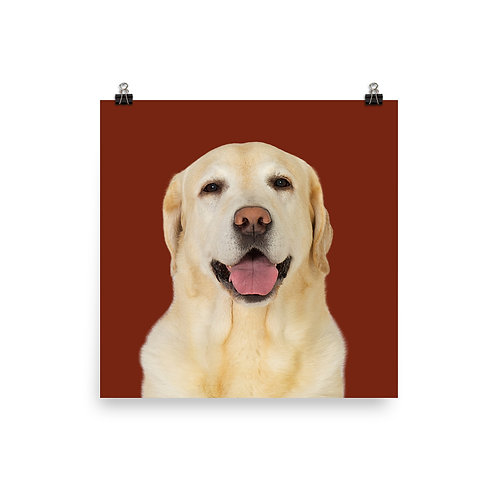 Art Print · Project 100 Dogs · Dundee the Labrador Retriever
