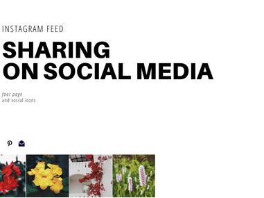 edelweiss society 1.0