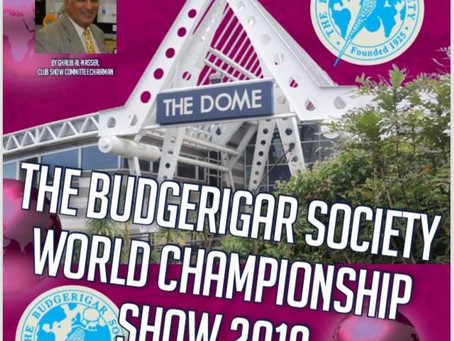 Jenny K Home is Going to the Budgerigar Society World Championship Show 2018
