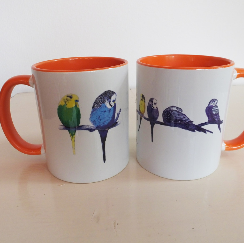 Jenny K Home Orange Budgie Mug Too Cute