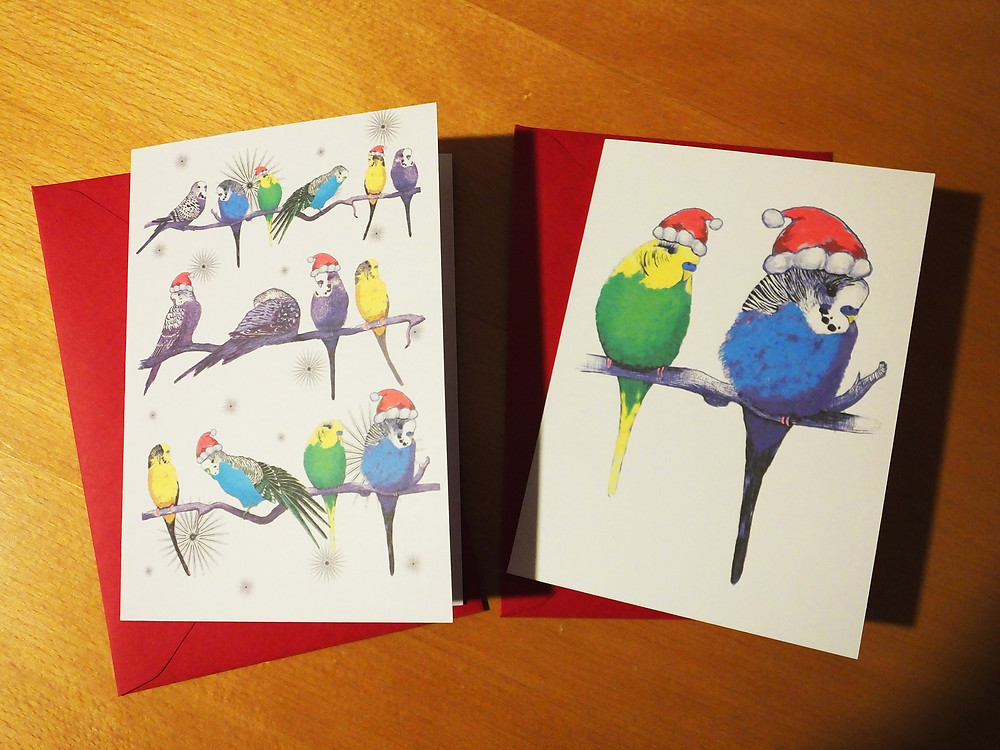 Budgie parakeet christmas cards handmade UK Jenny K Home