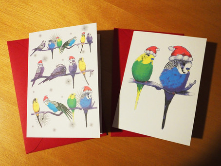 Budgie Christmas Cards - In Stock on the Jenny K Home Etsy Shop