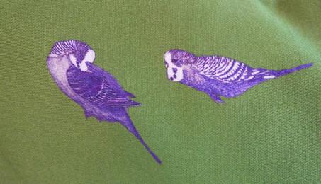 Blue Parakeets on Green Satin Cushion