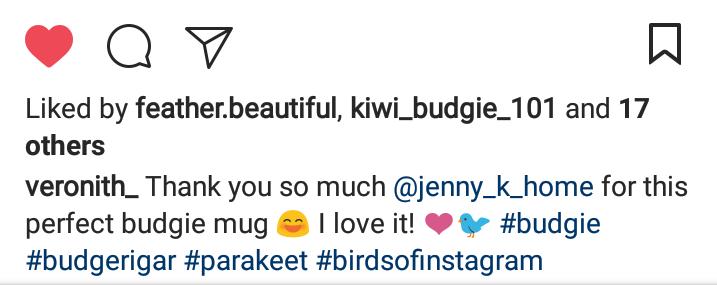 Jenny K Home customer review budgie mug testimonial