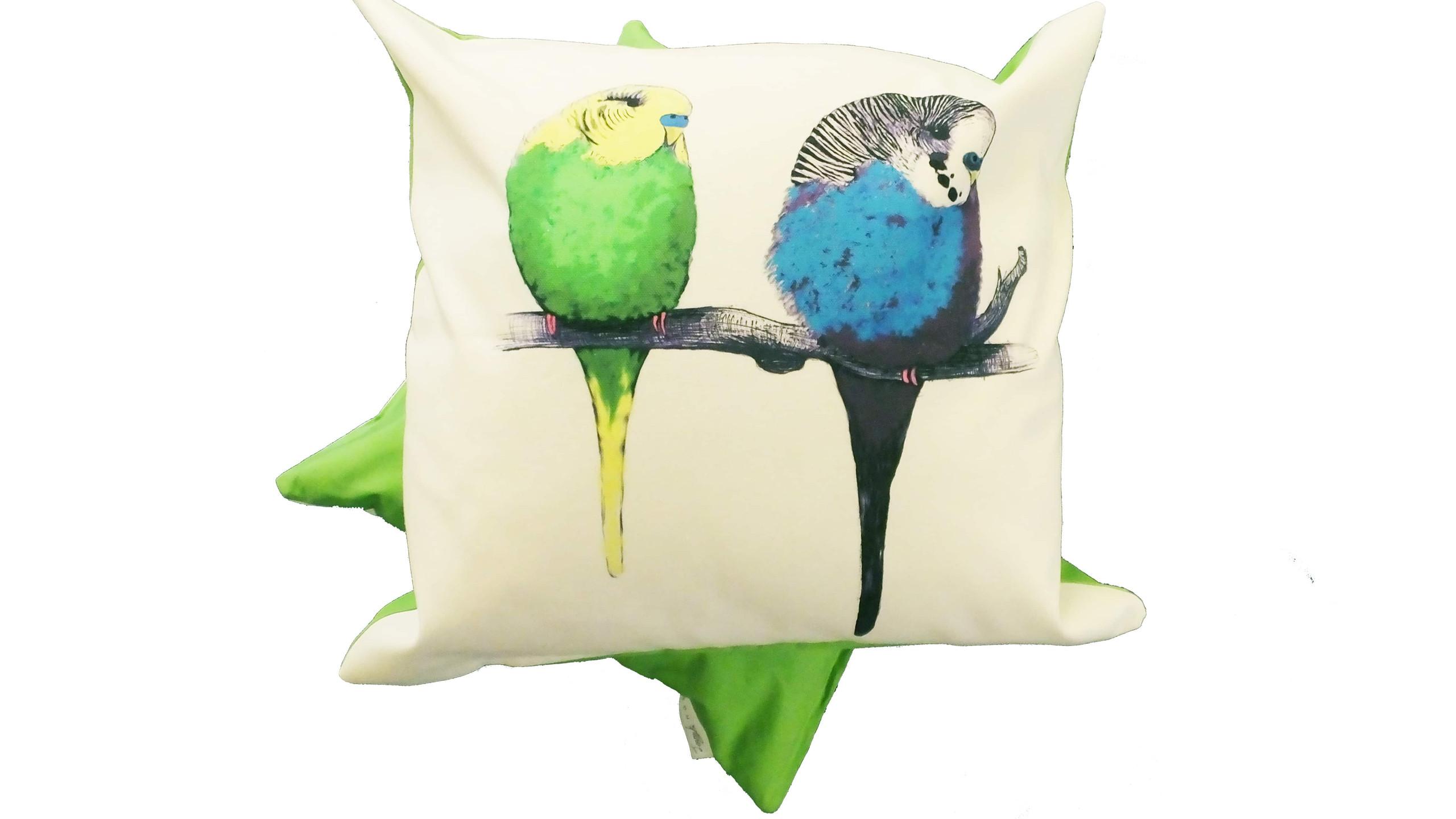 Jenny K Home - Budgie Bird Cushion We're too cute Pattern Multicolour Green Back 2-min